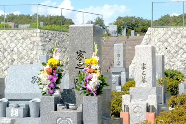 花が添えられ日差しを受ける墓